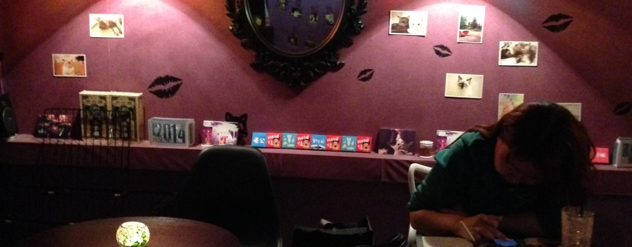 Petit Cat Cafe