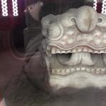 Buddhist Turtle