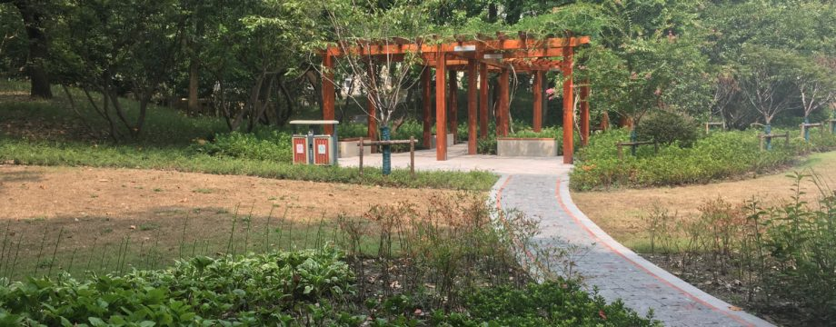 Hengshan Park – Places You Might Miss